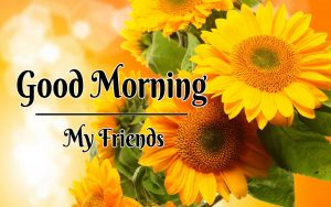Nice New Good Morning Images photo free hd download