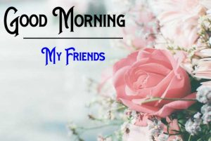 Nice New Good Morning Images photo hd