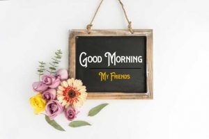Nice New Good Morning Images photo pics download