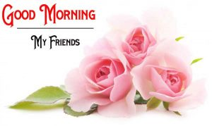 Nice New Good Morning Images pics for hd