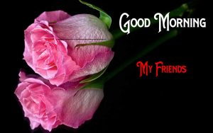 Nice New Good Morning Images pictures for hd