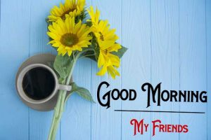 Nice New Good Morning Images pictures free hd