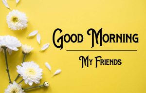 Nice New Good Morning Images pictures free hd download