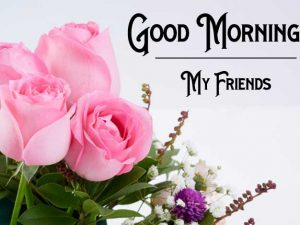 Nice New Good Morning Images pictures hd