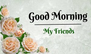 Nice New Good Morning Images pictures hd download