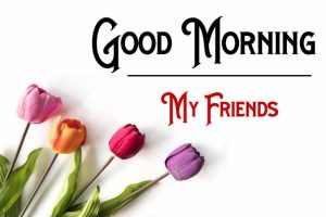 Nice New Good Morning Images wallpaper download