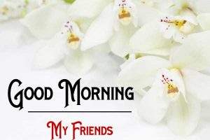 Nice New Good Morning Images wallpaper free download
