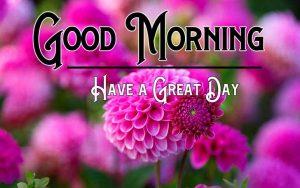 Pink Flower Good Morning Images