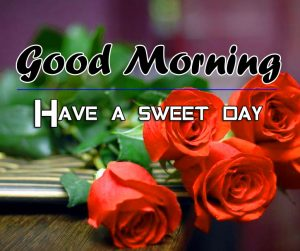 Red Rose p Good Morning Images for gf