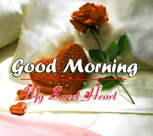 Red Rose Free Love Couple Good Morning Wishes Images Download