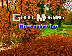Romantic Good Morning Images Photo Free