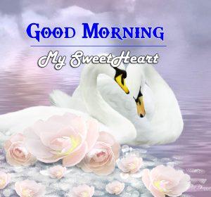 Romantic Good Morning Images Wallpaper FREE