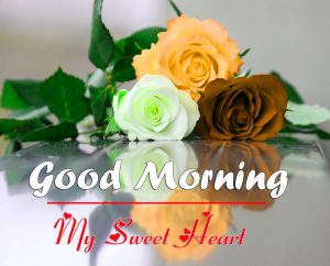 Romantic Good Morning Images Wallpaper HD