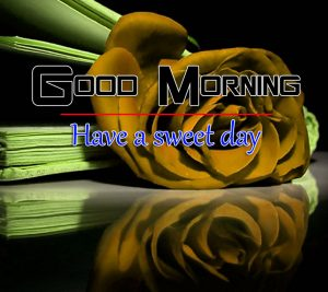 Rose p Good Morning Images Photo In Full HD