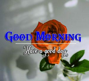 Rose hd Good Morning Images Pics Download