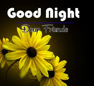 Sunflower Free Good Night Wishes Wallpaper