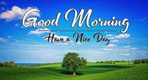Top HD p Good Morning Images Pics Download