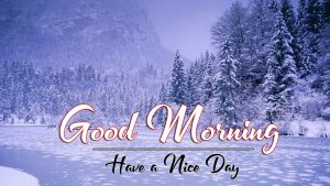 Winter p Good Morning Images Pics Download
