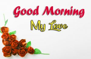 With Red Rose Beautiful Good Morning Images Pics Download