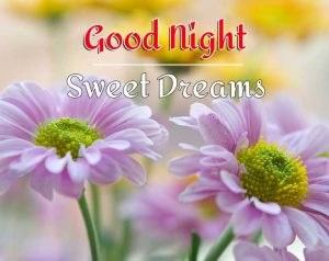 good night images photo pics hd for my love