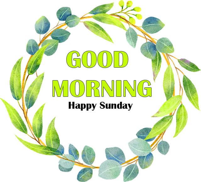 Best Quality Free Sunday Good Morning Images