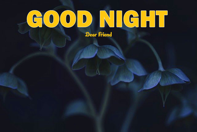 Best Quality Good Night Images Free