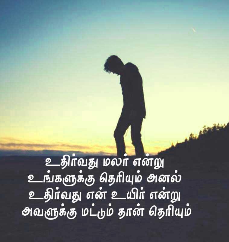 Best Tamil Whatsapp DP Wallpaper Hd