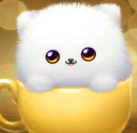 Cute Whatsapp DP Free Hd Pictures