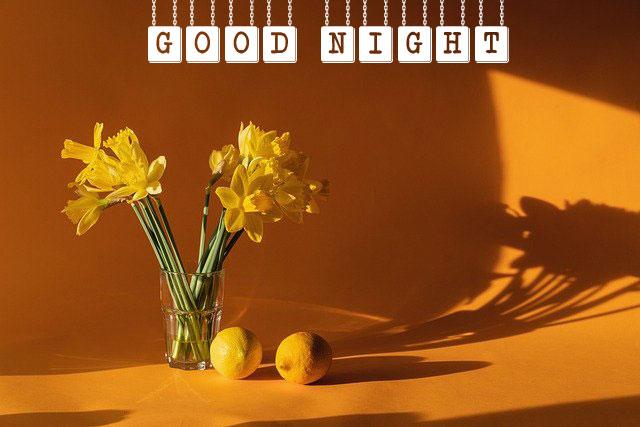 Free Good Night Wallpaper Download HD 2021