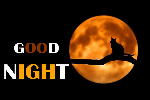 Free Good Night Wallpaper Images Download
