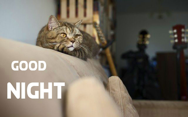 Free HD Good Night Pictures