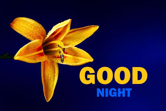 Good Night Wallpaper 2021 1