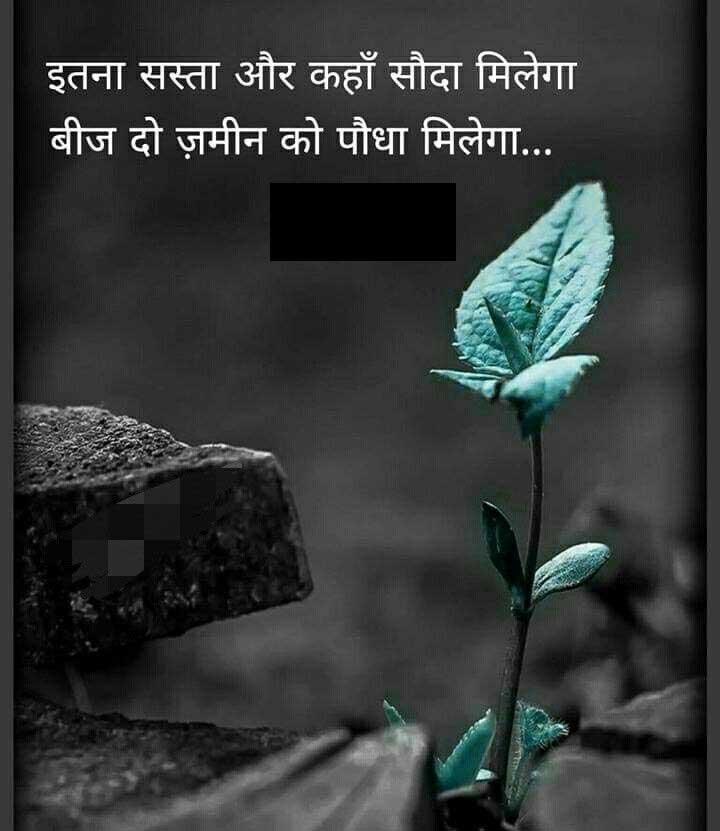 New Hindi Quotes Whatsapp DP Photo