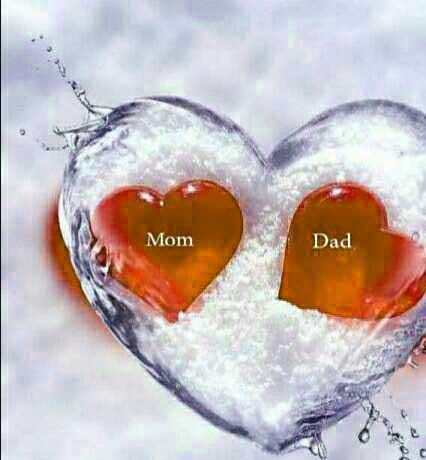 New Mom Dad Whatsapp DP Pics Images