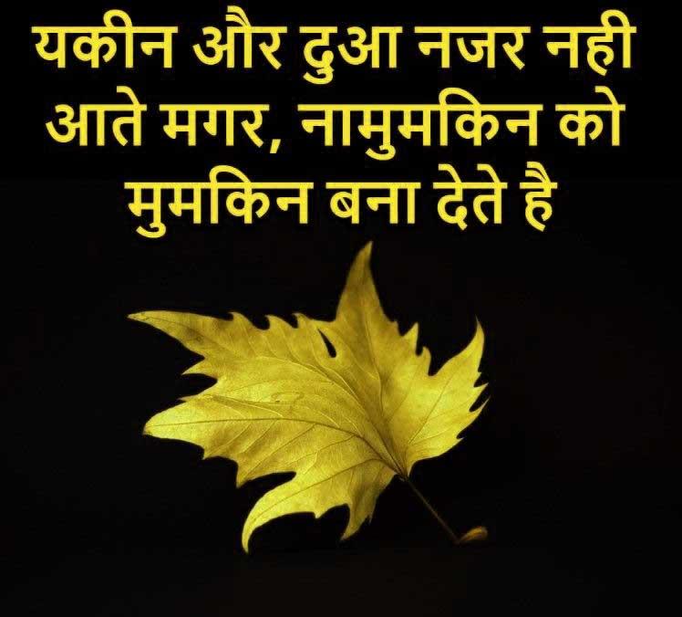 New Shayari Whatsapp DP Download