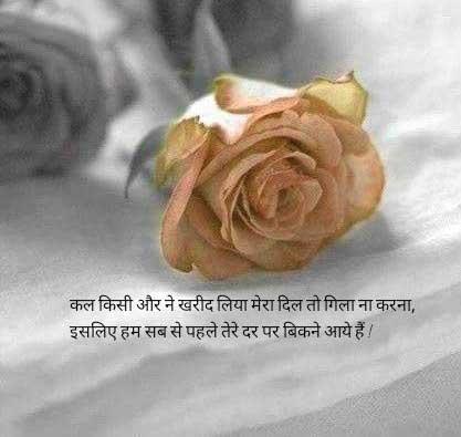 New Shayari Whatsapp DP Photo Hd Free