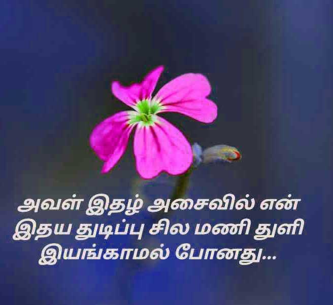 New Tamil Whatsapp DP Images Wallpaper