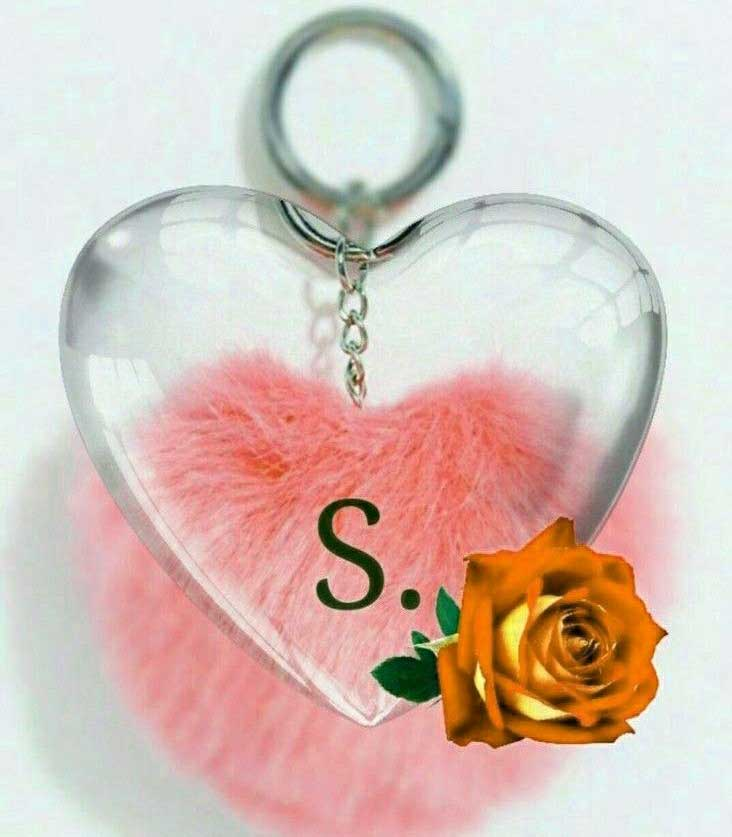 S Letter Whatsapp DP Download Free