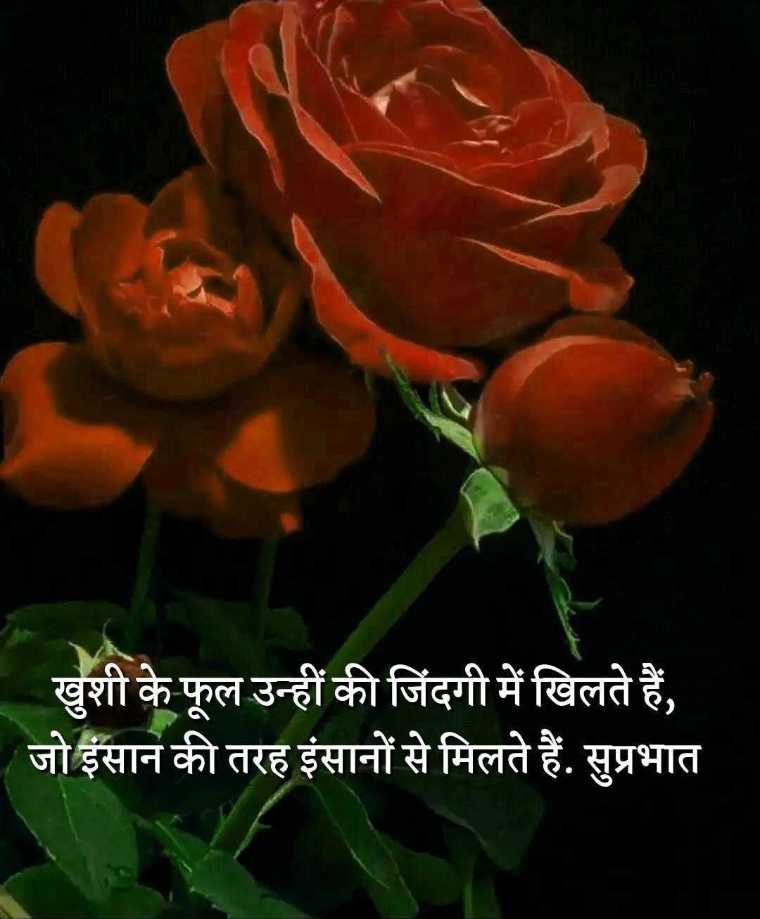 Shayari Whatsapp DP Images Hd