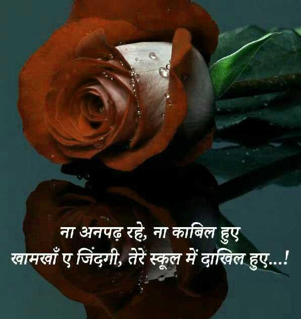 Shayari Whatsapp DP Images Pictures