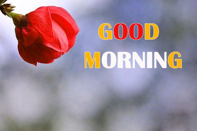 Sunday Good Morning Wallpaper Free Download