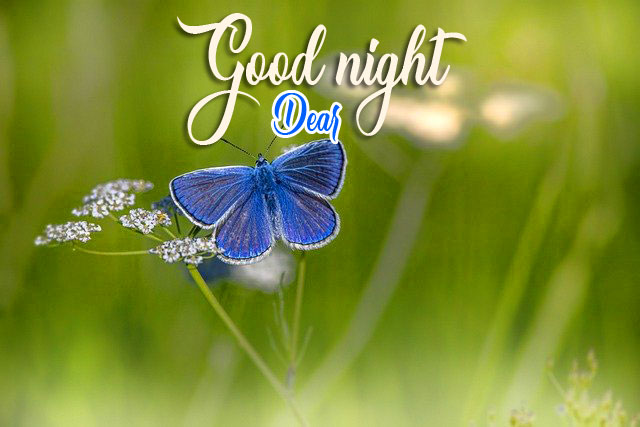 Top HD Good Night Images
