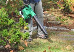 best gas leaf blower handheld