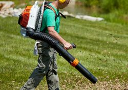 leaf blowers backpack lead