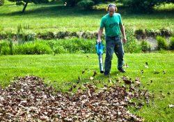 leaf blowers lead