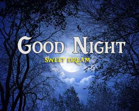 nature Good Night hd photo