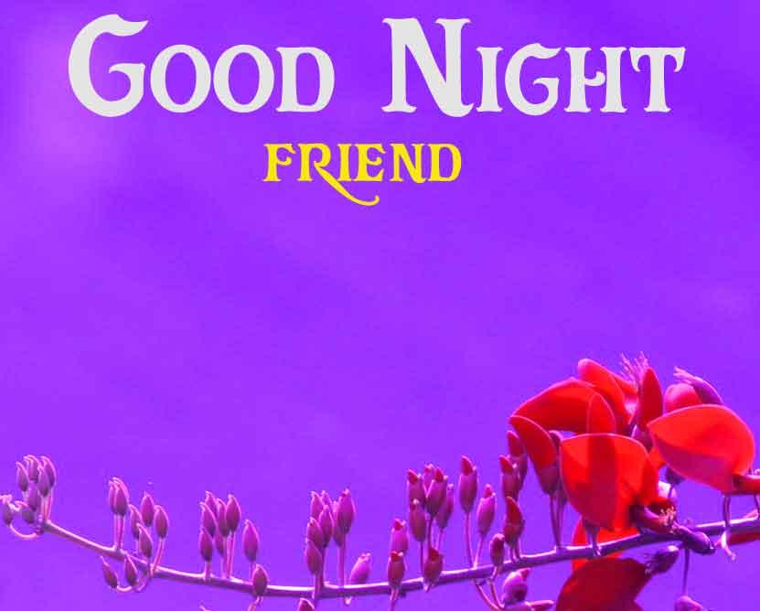 red flower Good Night wallpaper