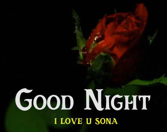 red rose flower Good Night photo