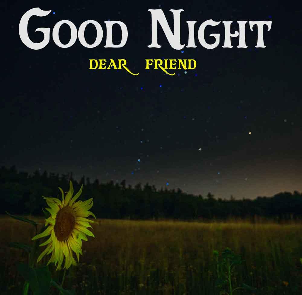 sad flower Good Night hd