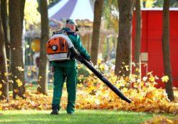 travailler dans parc elimine feuilles automne souffleur